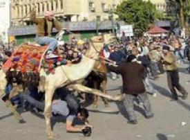 """صور عالية الجودة لمتظاهري ميدان التحرير تثير جدلاً بين ناشطي """"تويتر"""""""