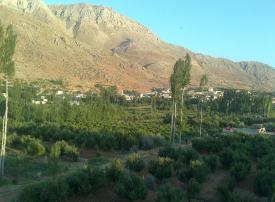 شركة خليجية تشتري أرضاً بريف دمشق لإقامة مشروع سكني