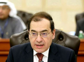 مصر ستوقف استيراد الغاز المسال منتصف العام الجاري