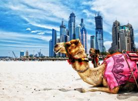 دبي الأولى عالمياً في إنفاق سياح الليلة الواحدة