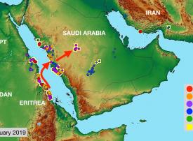 تحذير من تهديد الجراد للأمن الغذائي في مصر والسعودية