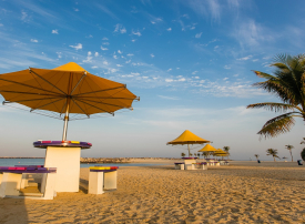 بلدية دبي تعلن عن الفرص الاستثمارية للحدائق العامة الكبرى