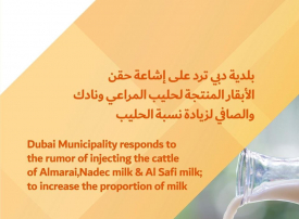 بلدية دبي تنفي حقن الأبقار المنتجة لحليب 3 شركات سعودية