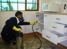 بلدية الشارقة تحذّر من خطورة شركات المبيدات الحشرية الغير مرخصة