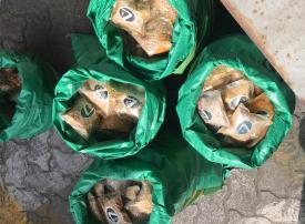 جمارك دبي تحبط تهريب مئات آلاف حبوب الكبتاغون في جبل علي