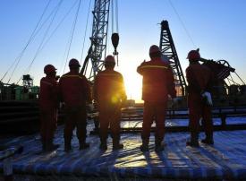 أسعار النفط تهوي بأكثر من 8 %
