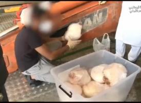 فيديو.. ضبط 1.5 طن مخدرات و1.2 مليون حبة مخدرة في أبوظبي