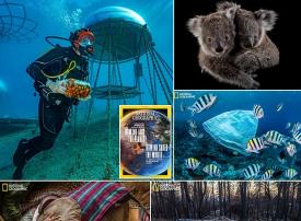 شاهد مزرعة تحت الماء ضمن صور ناشونال جيوغرافيك