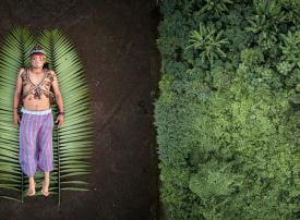 الفائزون بجوائز المنظمة العالمية للتصوير الفوتوغرافي لعام 2020