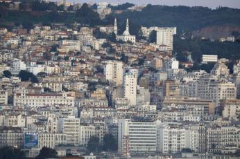 الجزائر: فتوى بعدم جواز إسقاط شعيرة الأضحية بسبب كورونا