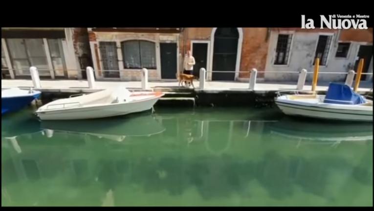 شاهد تسبب أزمة كورونا بصفاء مياه البندقية وتحسن كبير في جودة الهواء في إيطاليا