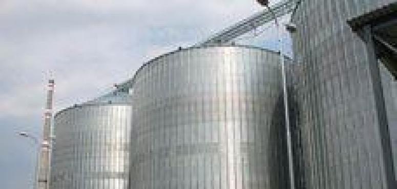 السعودية تطرح مناقصات لاستيراد القمح