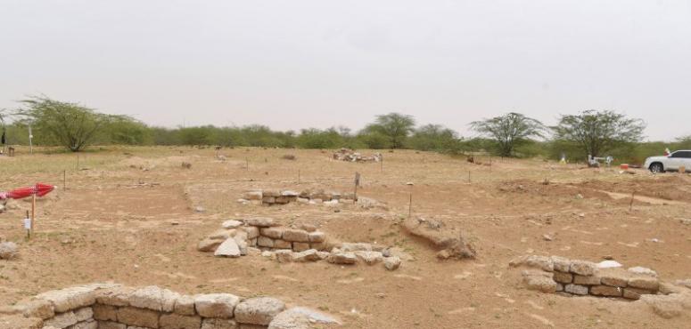 بالصور.. اكتشاف 15 مدفناً وتماثيل برونزية بموقع الدور الأثري في أم القيوين