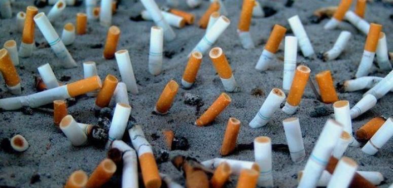 تراجع تجارة أبوظبي من التبغ إلى 5 ملايين درهم خلال يناير 2019