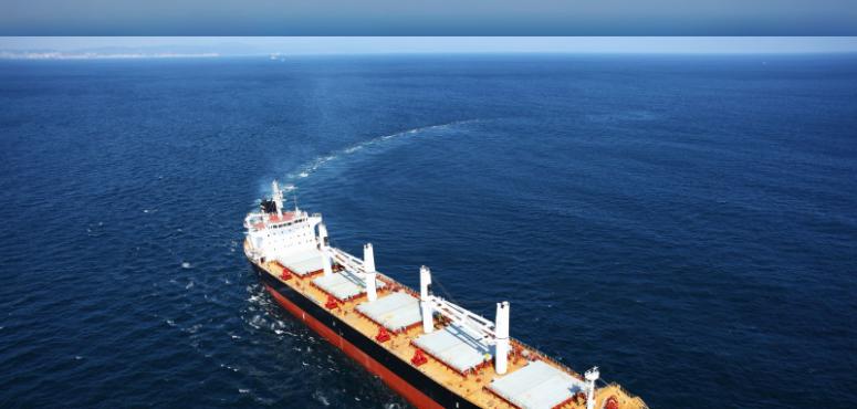 أدنوك الإماراتية تحول أسطولها البحري للعمل بالوقود منخفض الكبريت