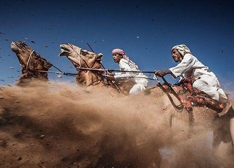 وزارة الزراعة السعودية تؤكد علاقة الإبل بكورونا وقانون قريب لمنع تجمعات الإبل