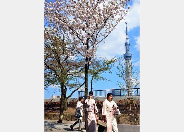 """طوكيو تستعد لافتتاح برج """"طوكيو سكاي تري"""" في مايو"""