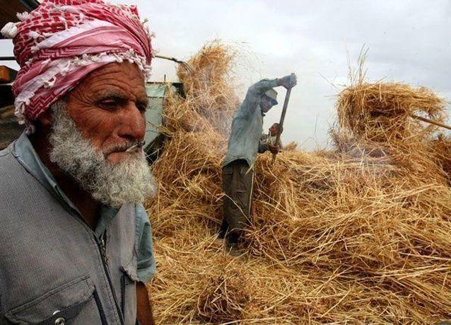 تحذيرات من انهيار شديد للاقتصاد الفلسطيني في السنوات المقبلة
