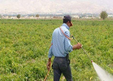 مساع اسرائيلية لاختراق السوق المحلي عبر المنتجات الزراعية في الاردن