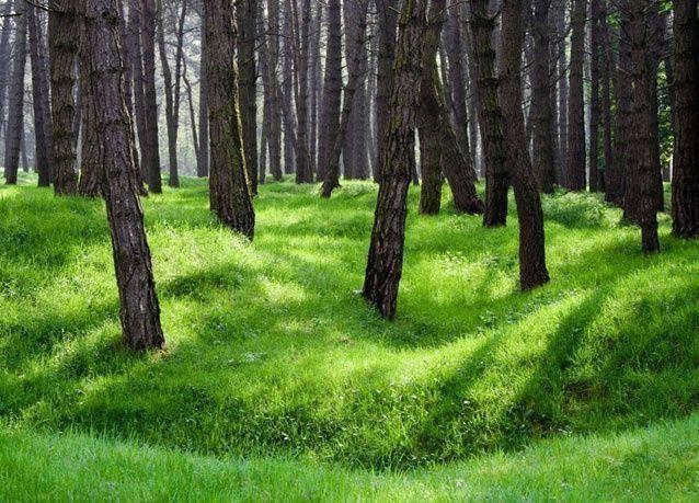 بالصور: أجمل الإجازات الخريفية لعام 2012