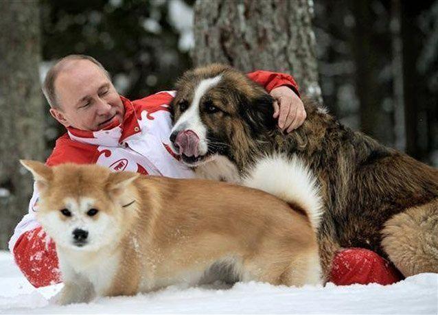 عودة المصارعة للبرنامج الاولمبي تلقى هوى في نفس بوتين