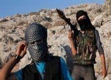 مقاتلو المعارضة السورية يطالبون بنصف مقاعد الائتلاف الوطني