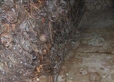 اكتشاف مقابر جماعية تعود إلى النكبة في يافا