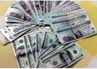 الدولار يستقر في تعاملات الصرافة المصرية.. وإقبال كبير على شرائه