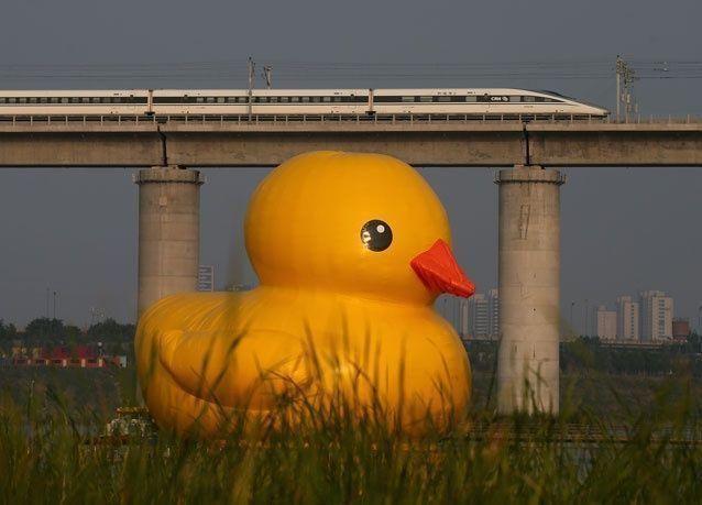 بطة بكين تعود للحياة في معرض بكين الدولي