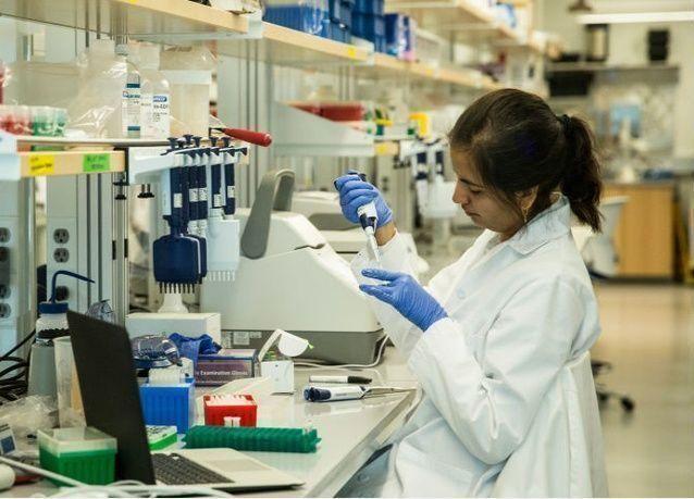 في مصر علاج السرطان بجزيئات الذهب