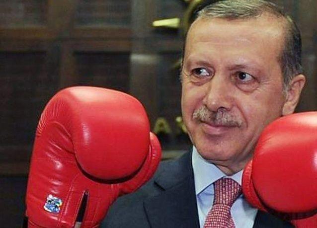 تزايد الضغوط على الرئيس التركي بسبب قانون الانترنت