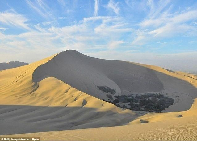بالصور: واحة حقيقية في منتصف صحراء البيرو