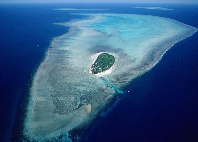 بالصور: تعرف على جزيرة هيرون الأسترالية