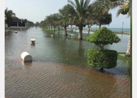 الإمارات: عاصفة أشوبا تلحق أضرارا لكورنيش كلباء