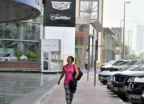 """طيور """"المينا"""" تهاجم النساء في إحدى شوارع دبي"""