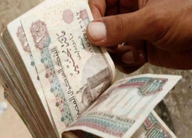 مصر تضع ميزانية 2016-2017 على أساس سعر 8.25 جنيه للدولار