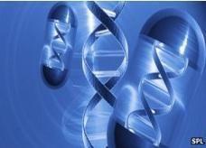 أغلى دواء في العالم يحظى بموافقة الاتحاد الأوربي وهو أول علاج جيني