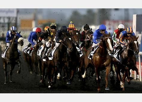 صور من كأس دبي العالمية للخيول 2012