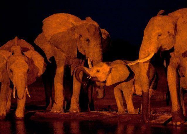 أجمل صور الطبيعة لعام 2012