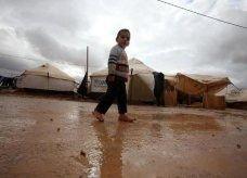 خليفة يأمر بــ 5 ملايين دولار مساعدات للاجئين السوريين في الأردن