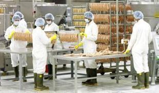 238 فتاة سعودية يعملن في مصنع دواجن لأول مرة بتاريخ المملكة
