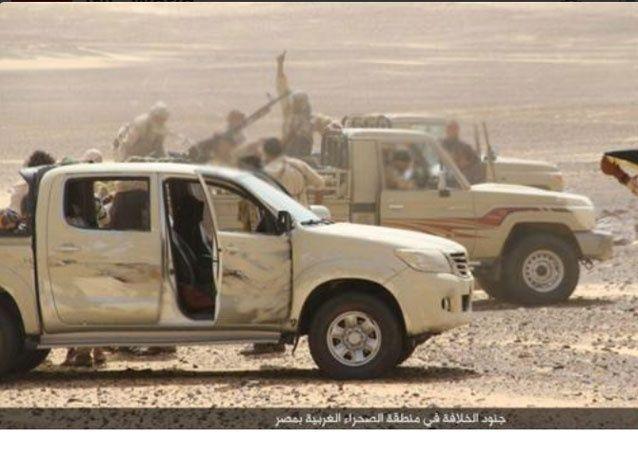 الجيش المصري يقتل 12 سائحا بالخطأ