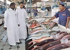 """""""نطاقات"""" يتسبب في خفض كميات السمك المحلي السعودي 20%"""