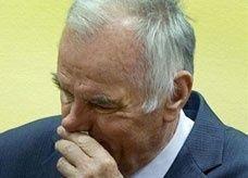 """""""جزار"""" البوسنة يحاكم في لاهاي لقتله 100 ألف بوسني"""