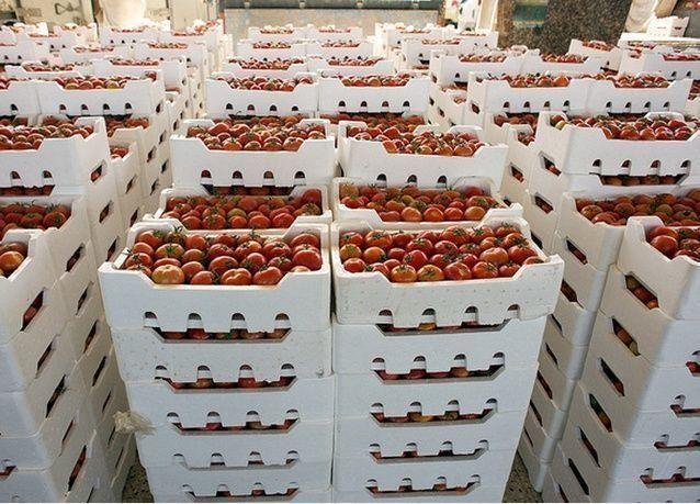 الرياض تدعو المغرب لتصدير الطماطم إلى السعودية صيفاً