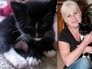 قطة توقظ زوج صاحبتها وتنقذها من الموت