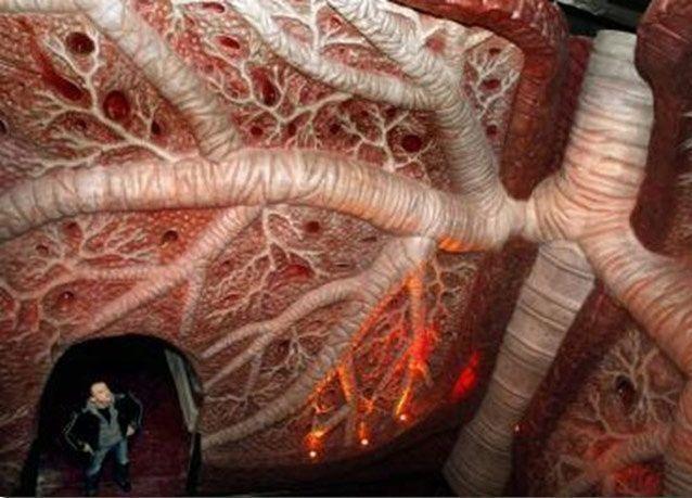 متحف يأخذك في رحلة داخل جسم الإنسان