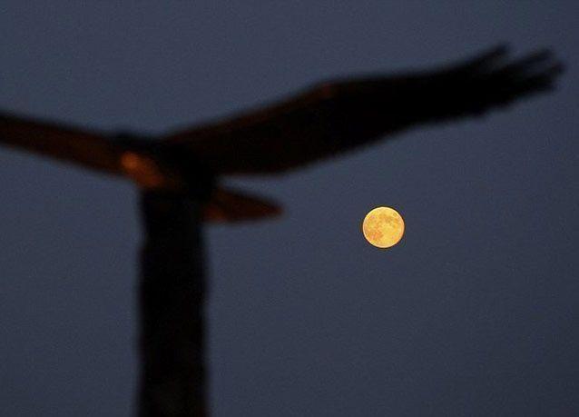 لغز القمر الأزرق.. بالصور