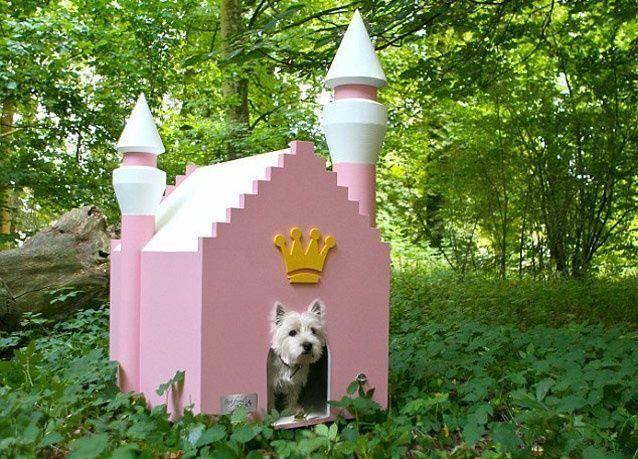 صور لأجمل بيوت الكلاب المدللة