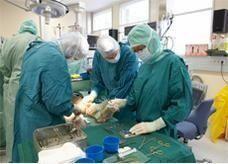 يابانيون يبتكرون خلايا قاتلة للسرطان يمكن حقن المرضى مباشرة بها